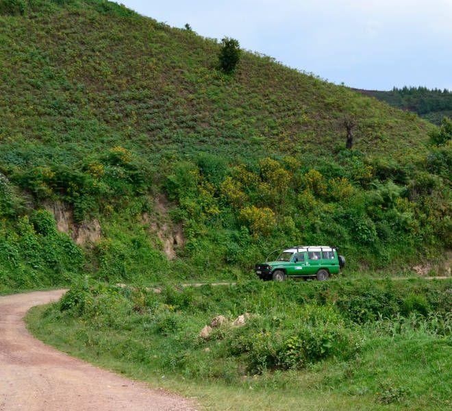 Uganda safari inspiration